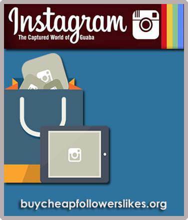 Buy Instagram Followers - BCFL