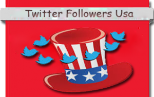 Buy twitter followers usa
